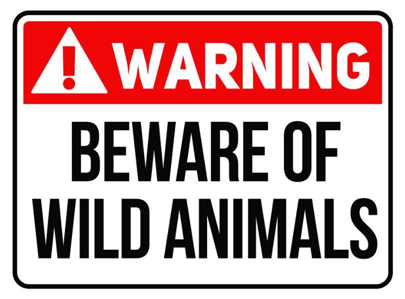 warning-beware-wild-animals-warning-sign-vector-23651709